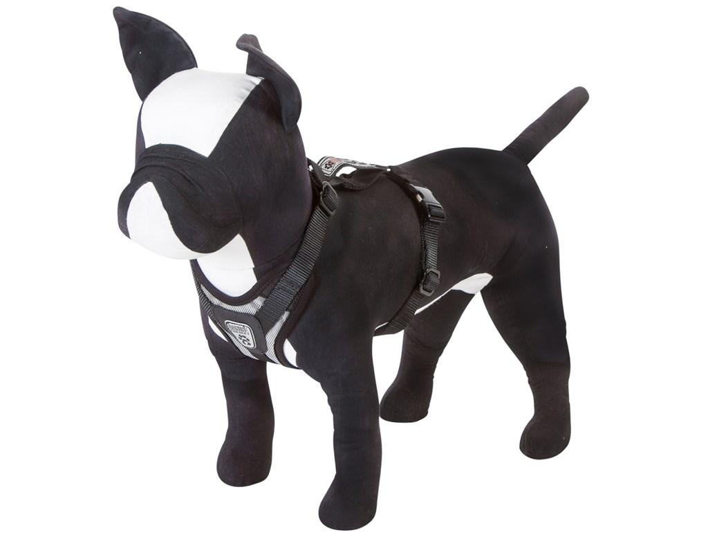 canine friendly ceinture de s curit pour chien. Black Bedroom Furniture Sets. Home Design Ideas