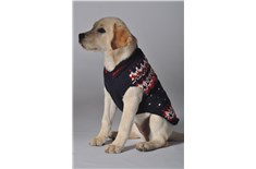 Chandail de Laine Alpine Marine pour Chien - Chilly Dog