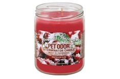 Chandelle Anti-Odeur Sugared Cranberry - Pet Odor