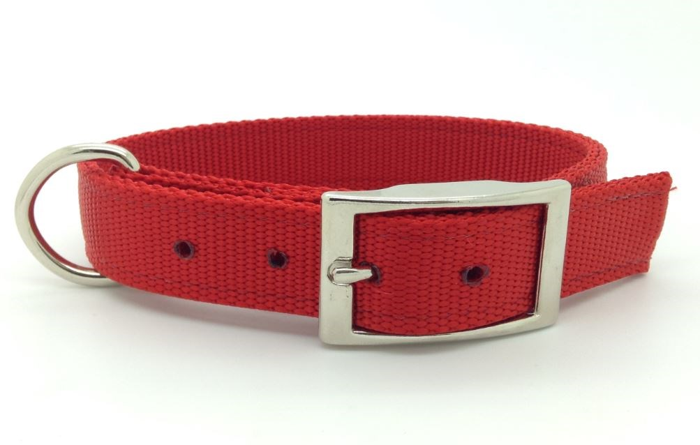 double collier pour chien