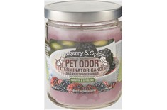 Chandelle Anti-Odeur Mulberry Spice - Pet Odor