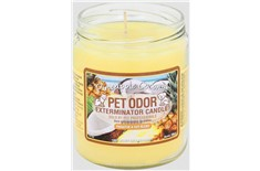 Chandelle Anti-Odeur Pineapple Coconut - Pet Odor